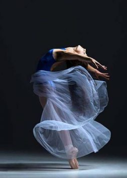 Art of Ballet by Gene Schiavone