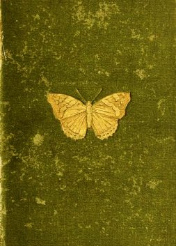 Butterflies and Moths by W. Furneaux