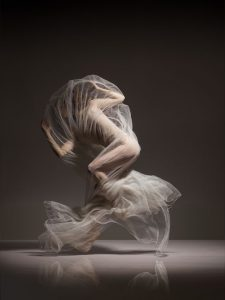 Art of Ballet by Lois Greenfield